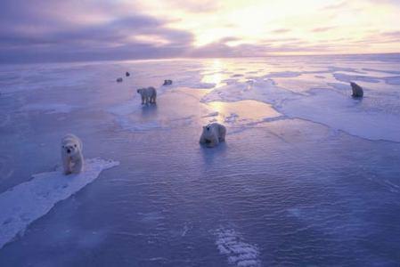 El deshielo del Ártico se acelera