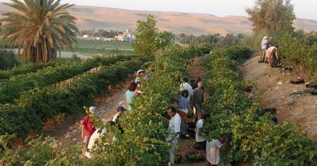 Kibbutz Neot Semada
